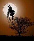 Luce della luna leggiadramente Immagini Stock