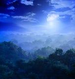 Luce della luna nelle giungle Fotografia Stock