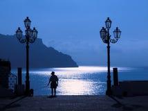 Luce della luna sul litorale Fotografia Stock