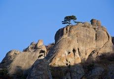 Luce delle rocce di mattina Immagine Stock Libera da Diritti