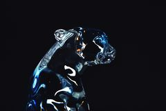 Luce dello studio del ghepardo di colori di vetro Immagini Stock