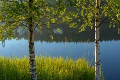Luce di mattina di autunno Fotografie Stock Libere da Diritti