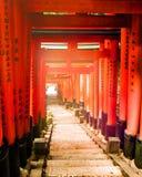 Luce di mattina di Fushimi Inari-taisha fotografia stock