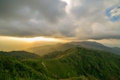 Luce di mattina sopra il selvaggio Fotografie Stock