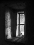 Luce di mattina in vecchia cabina Fotografia Stock Libera da Diritti