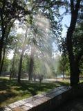 Luce di Sun nella goccia di acqua Fotografie Stock