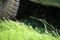 Luce ed ombra - erba sotto l'automobile coperta da fango di detai Immagine Stock