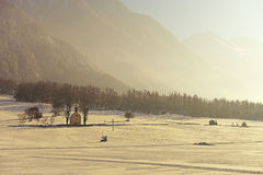 Luce gialla in Austria Fotografie Stock Libere da Diritti