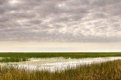 Luce molle di mattina a Cheyenne Bottoms Wildlife Refuge immagine stock libera da diritti