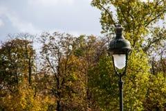 Luce nel giardino Immagini Stock