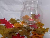 Luce notturna di autunno immagini stock