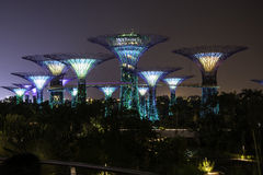 Luce notturna in giardino dalla baia Singapore Fotografia Stock Libera da Diritti