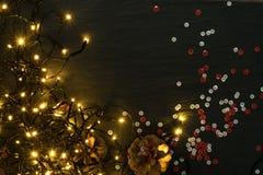 Luce o Garland Lights di Natale su sfondo naturale fotografia stock libera da diritti