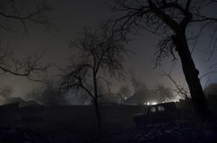 Luce sconosciuta in una foresta scura alla notte, paesaggio nebbioso spettrale delle siluette degli alberi con luce dietro, conce Fotografie Stock