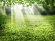 Luce solare Fotografia Stock