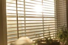 Luce solare attraverso i ciechi Fotografie Stock Libere da Diritti