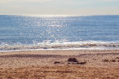 Luce solare che riflette sul mare blu scintillante alla spiaggia di Southwold nel Regno Unito immagini stock libere da diritti