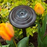 Luce solare del giardino Immagine Stock Libera da Diritti