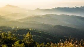 Luce solare di Beautifu e la foschia a Doi Inthanon Chiang Mai, Thail Fotografia Stock Libera da Diritti