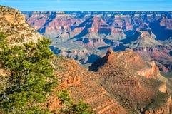 Luce solare di mattina che splende sulle formazioni rocciose in Grand Canyon Fotografia Stock Libera da Diritti