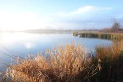 Luce solare nebbiosa del lago di mattina immagine stock libera da diritti