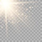 Luce solare trasparente dell'oro di vettore illustrazione di stock