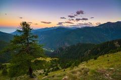 Luce solare variopinta sui picchi di montagna, sul terreno boscoso e sulle valli maestosi delle alpi francesi italiane Fotografie Stock Libere da Diritti