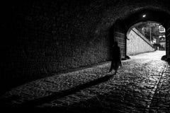 Luce sull'estremità di un tunnel Fotografie Stock