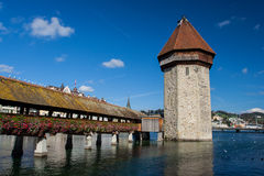 Lucern Stock Photos
