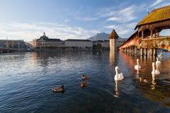 Lucerna, a ponte da capela Fotos de Stock Royalty Free