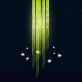 Lucernas que vuelan alrededor de la lámpara Imágenes de archivo libres de regalías