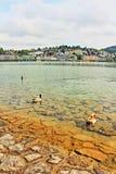 Lucerne湖视图瑞士 免版税库存照片