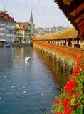 Lucerne Image stock