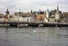 Lucerne Stock Photos