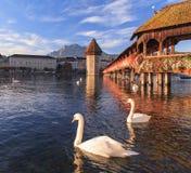 Lucerne, the Chapel Bridge. Lucerne, Switzerland - the Chapel Bridge Stock Photo