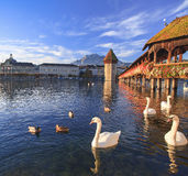 Lucerne, the Chapel Bridge in early morning Stock Images