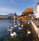 Lucerne, the Chapel Bridge Stock Image