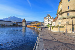Lucerne, early morning Stock Photography