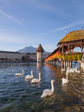 Lucerne, early morning. Lucerne, Switzerland, early morning. The Chapel Bridge and the Water Tower with Mt. Pilatus at the background Stock Photo