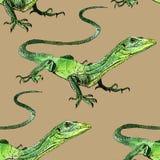 Lucertola dell'acquerello, disegno dipinto a mano del profilo Immagini Stock Libere da Diritti