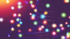 Luces al aire libre coloridas de la secuencia envueltas alrededor de árbol Imagenes de archivo