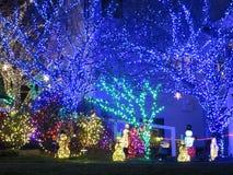 Luces azules de la Navidad en los árboles foto de archivo libre de regalías