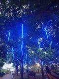 Luces azules en árboles y hamacas en el parque imagen de archivo