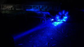 Luces azules en festival de la iluminación en yarda del pueblo cerca del lago 4K metrajes