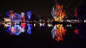 Luces coloridas de la Navidad en el festival de Zoolights Imagen de archivo libre de regalías