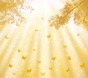 Luces de Brillant en el cielo y la mariposa ilustración del vector