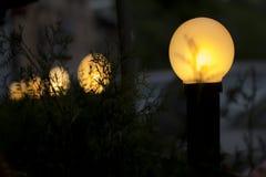 Luces de calle amarillas en oscuridad Imagenes de archivo