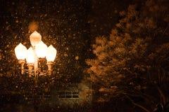 Luces de calle en nieve en la noche Imágenes de archivo libres de regalías