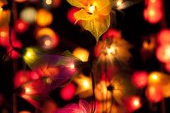 Luces de hadas Foto de archivo