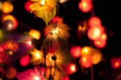 Luces de hadas Imagen de archivo